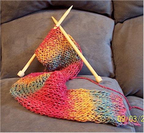 multicolor pidge