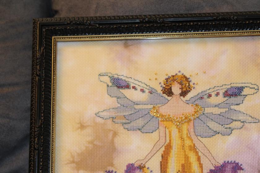 iris-close-up-of-frame