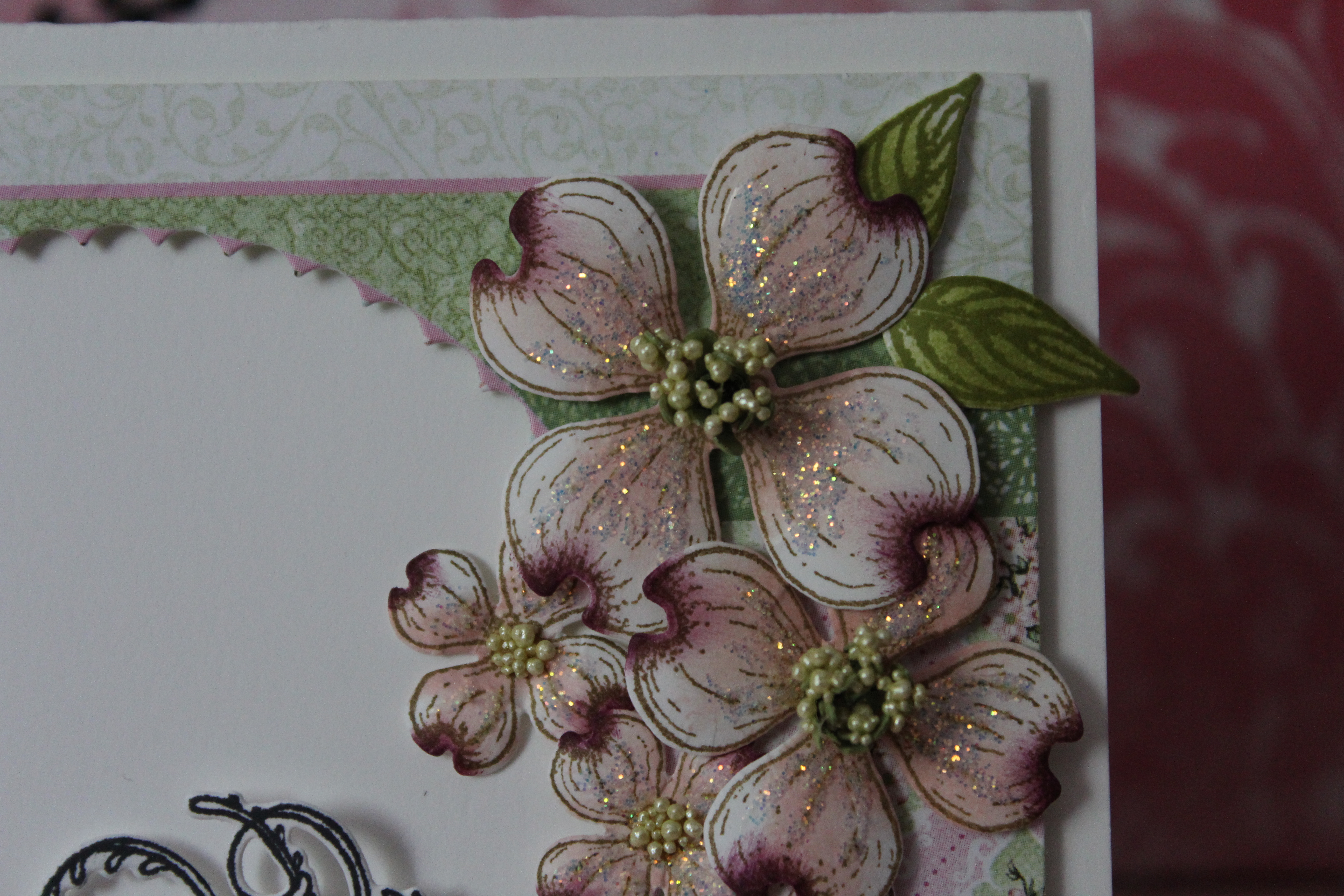 close up of dogwood flowers